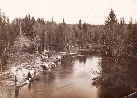 На реке Осиновка