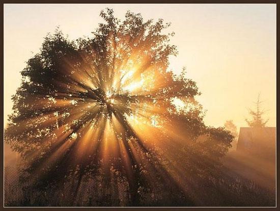 «11-я параллель! – «Новый день»