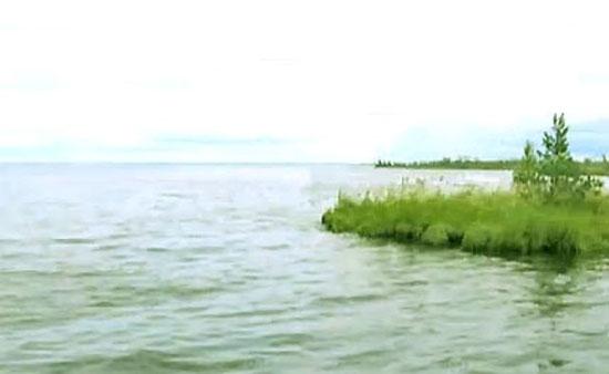 Плывущий остров на Синдорском озере