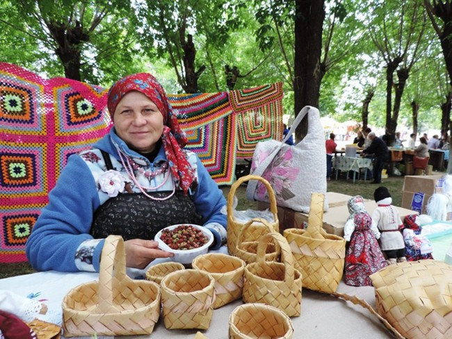 Елена Шихова