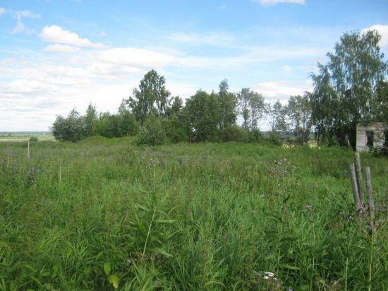 Так выглядит бывшая деревня Минина Полянка сегодня