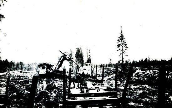 Погрузка древесины в сцепы УЖД