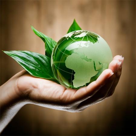 Компания «АМД Экология»
