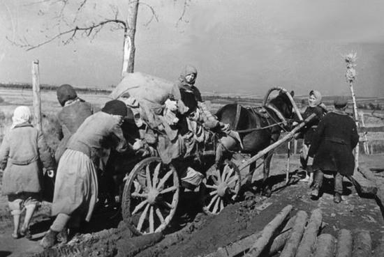 Женщины-колхозницы, война уравняла всех