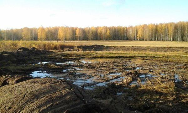 Чистые пруды в Опарино
