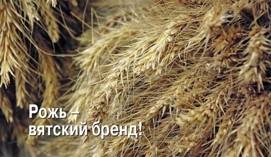 Теперь этот бренд живет только на плакате. Неужели мы доживем до того, что вятская рожь останется только на картине Ивана Ивановича Шишкина, отец которого был купцом, торговавшим хлебом, сплавлявший рожь на ярмарки по Волге и Каме?