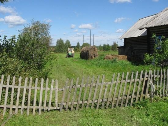 Деревня Стрельская, которая была три года местом работы и местом жительства Анатолия Ивановича и Галины Николаевны Суровцевых