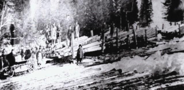 История Альмежа  (развитие лесной промышленности)