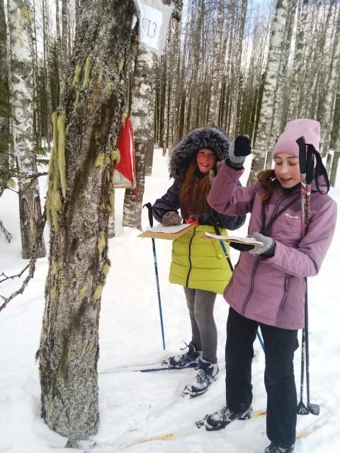 Спортивное ориентирование на лыжах
