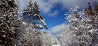 Опаринский район: экология и охрана природы