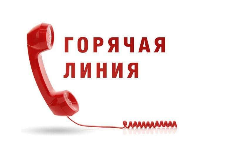 Телефон горячая линия