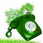 19 марта горячая телефонная линия Кадастровой палаты
