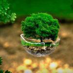 Нововведения экологического контроля и надзора