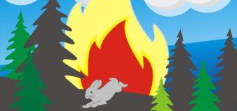Внимание – пожароопасный период!