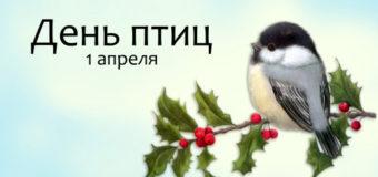 Проведен «День птиц»
