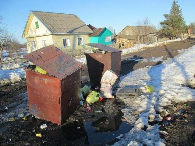 Оксана Александровна Трубина о мусорной проблеме