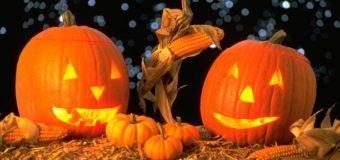 Ха-лоу, Хеллоуин! Часть 5