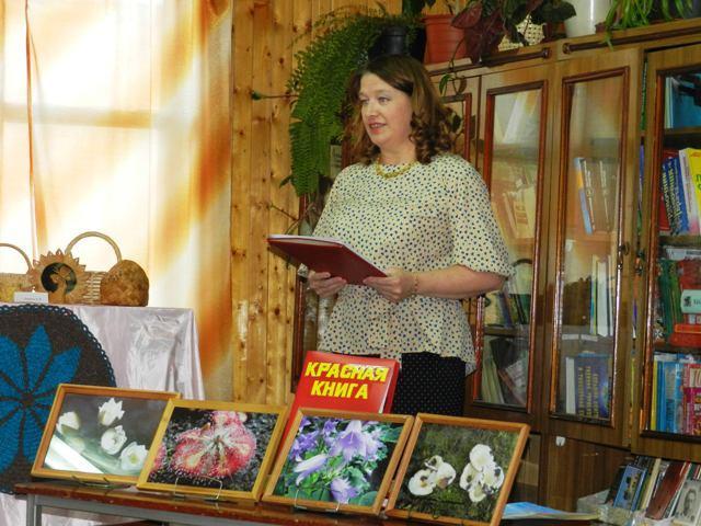 Акция «Библионочь» в 2017 году