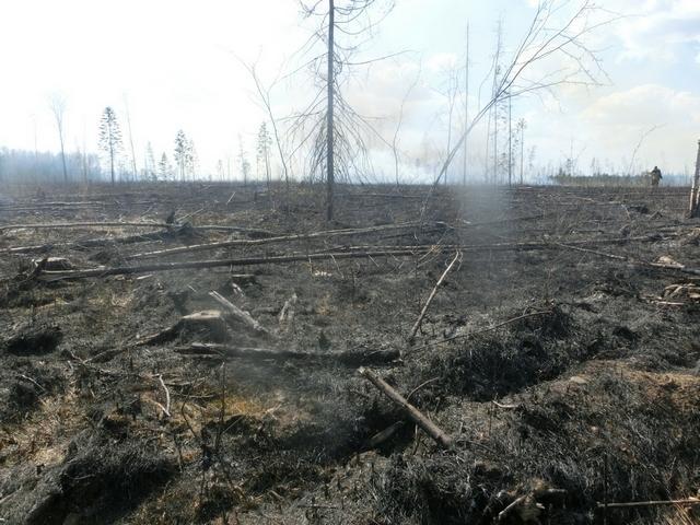 Безопасность в пожароопасный период