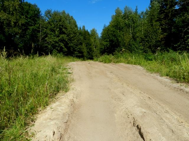 Дорога на Волгарицу
