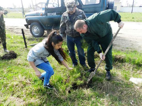 Посадите деревце, пусть оно растет!